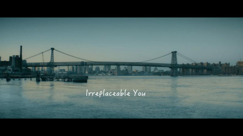 irreplaceableyou3